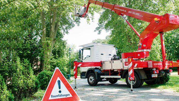 Schwierige Baumabtragungen sind unter Einsatz von Kran und Arbeitsbühne kein Problem.